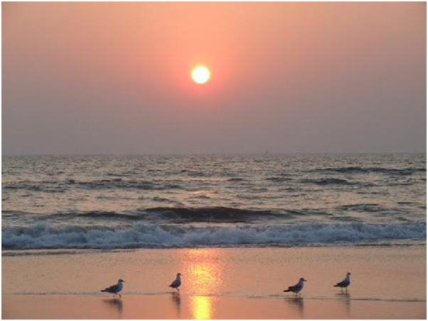 Sunrise and sunset in Goa
