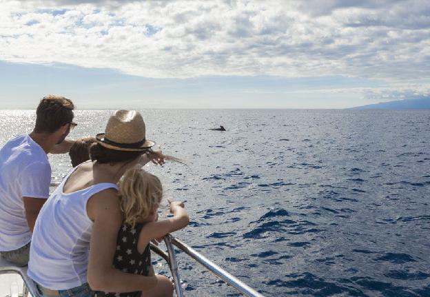 ocean around Tenerife
