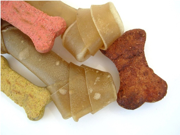 tasting dog foods
