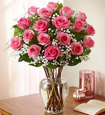 A Pink rose gratitude