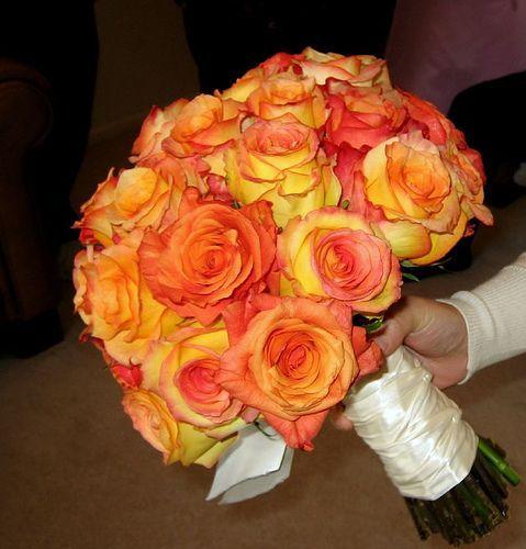 An orange rose desire