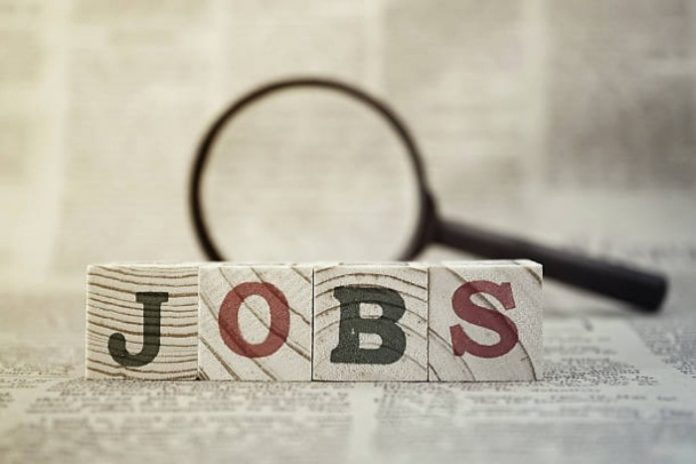 A Comprehensive Guide to Find Good Employment Efficiently