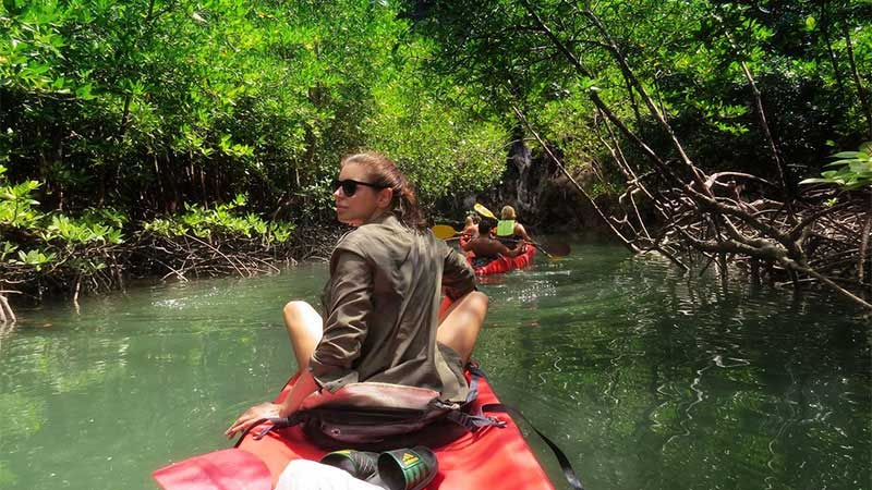 Kayaking around the beautiful mangrove forests-min