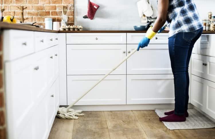 Keep House Germs Free