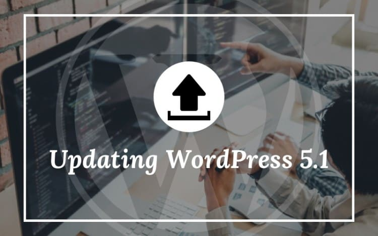 Updating WordPress 5.1
