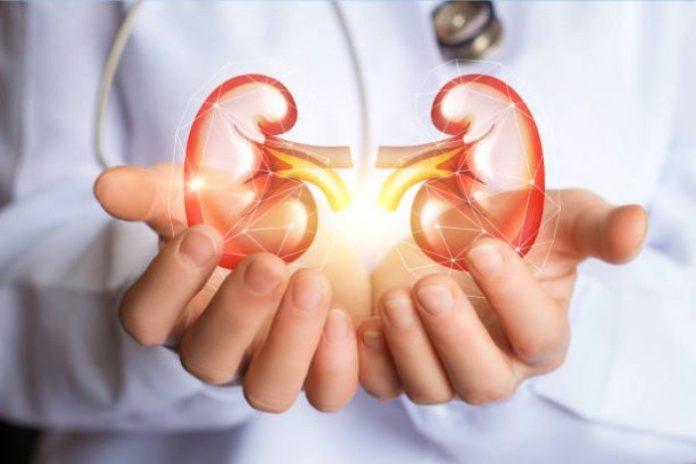 Kidney Patients Diet