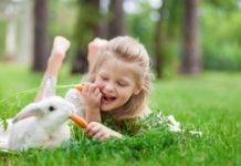 kid friendly exotic pets