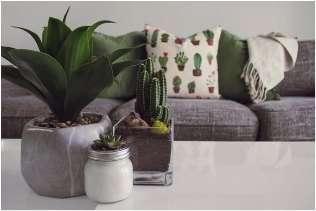 Keep artificial indoor plants