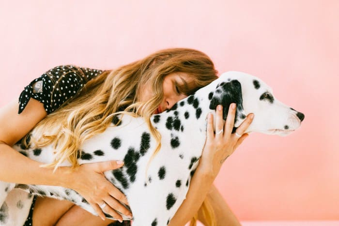Dog Care – Live Life the Dog Way!