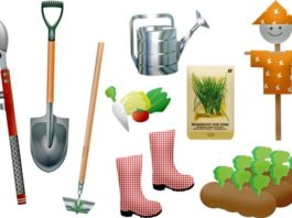 How to Care for Garden Tools in the Winter