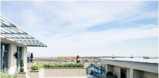 LOVE ON TOP- 8 Ways a Rooftop Garden Makes a House a Better Home