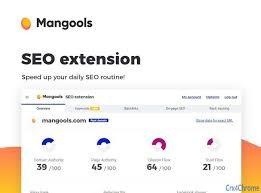 Mangools SEO extension