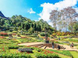 how to transform a garden