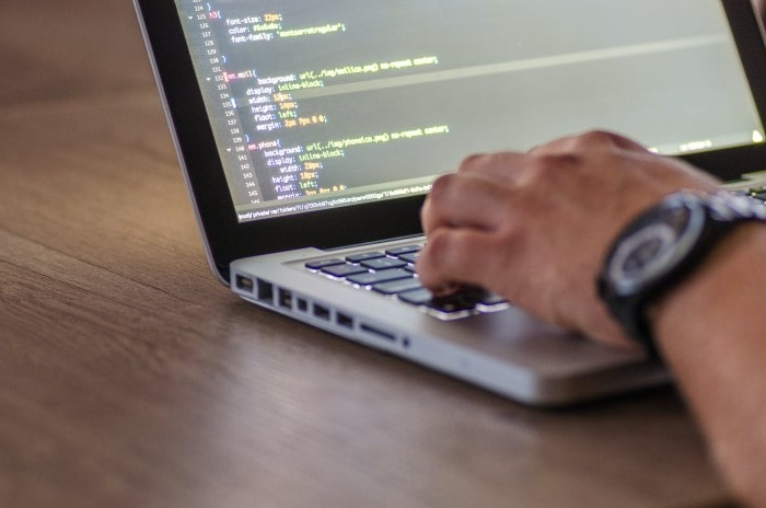 The Essence of Software Testing and Its Techniques