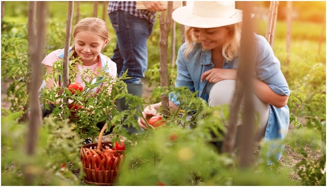 Gardening for Family Health