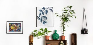 Trendy Wall Décor Ideas To Revive Your Space