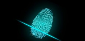 Fraud Risks in Biometric Verification