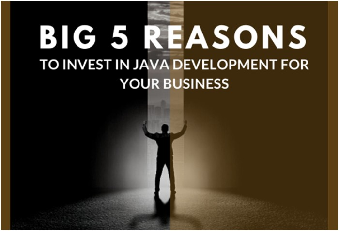 Big 5 Reasons to Invest in Java Development for Your Business